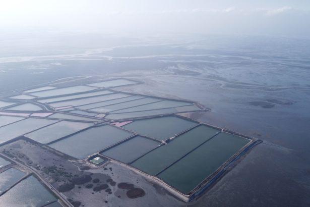 彰化海岸光電開發預定地