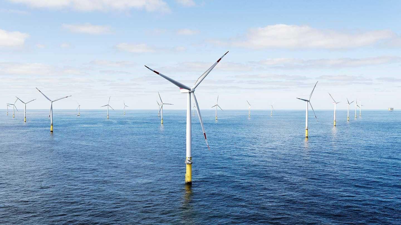 政府力推離岸風電,但程序卻不完備,難保障漁民權益(圖片來源/勞動部)