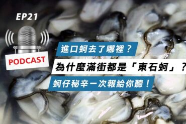 為什麼滿街都是「東石蚵」?進口蚵去了哪裡?
