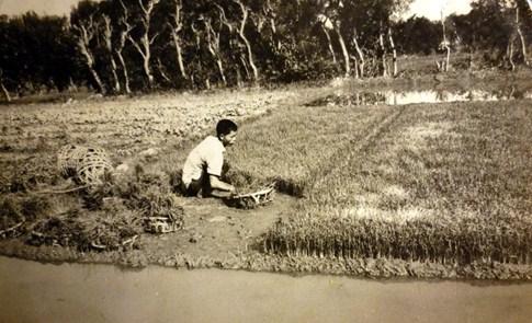 農怎麼大:2011年7月地理筆記