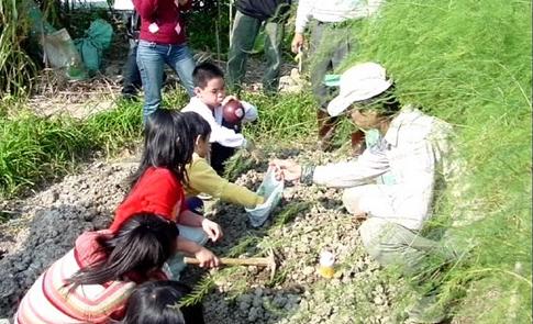 都市農耕(上):社區大學,一起來種菜
