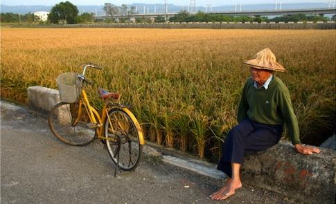 因應老年化社會:保護農村的環境整備