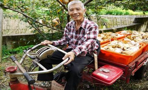 我心中的家鄉─農家二代的農事初體驗