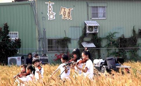 麥田見學:台灣小麥校園培育計畫,開跑!