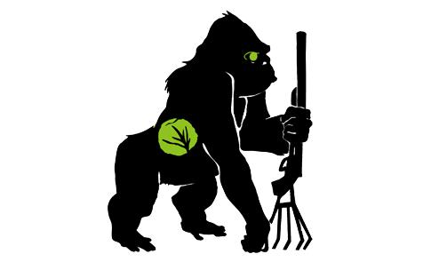 都市游擊(1):大猩猩綠色游擊隊,細說從前