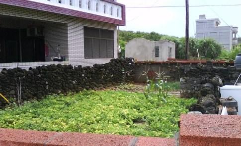 菜宅:澎湖雖小,也有小小的農業!