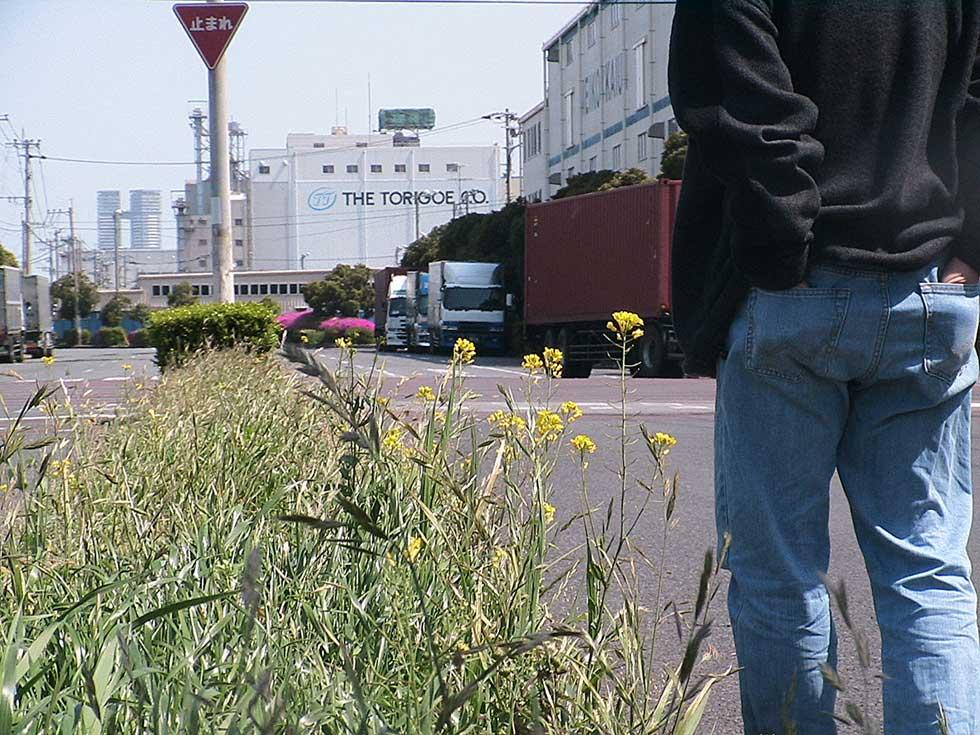 2010年4月28日於福岡県博多港保管大豆和玉米的儲藏槽前拍攝。檢驗後為抗嘉磷塞基改油菜
