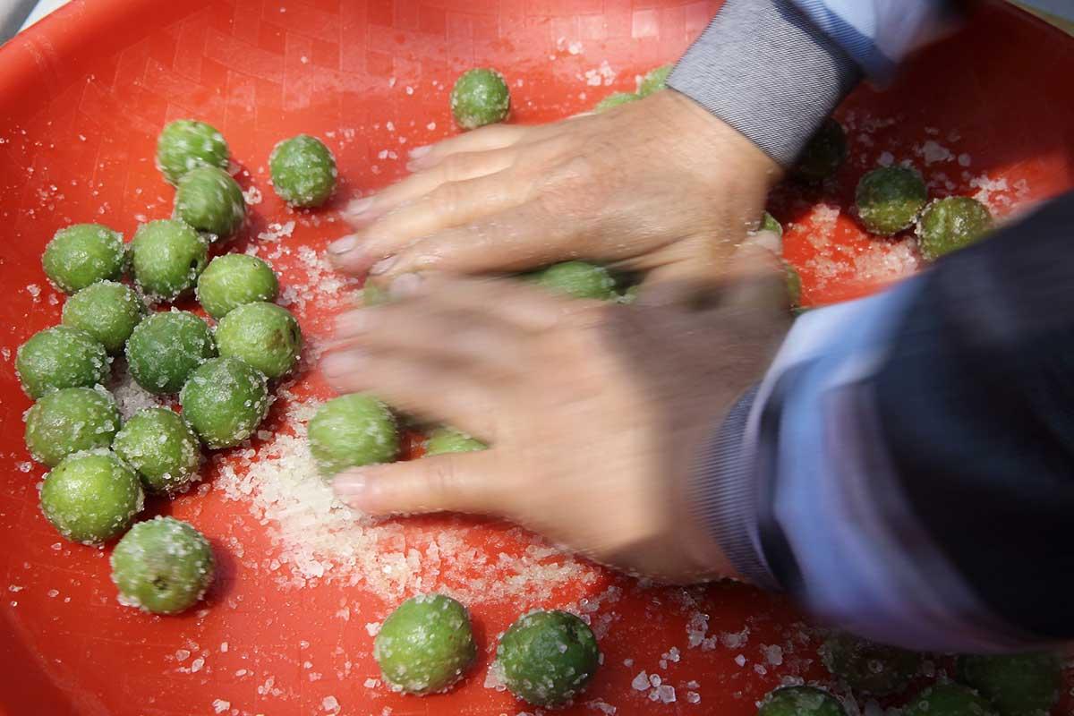 手勁恰到好處,粗鹽粒粒吐梅子之澀。攝影/連慧玲