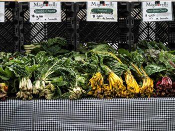 波蘭唾手可得的蝦夷蔥、蒔蘿、甜菜……在台灣要找也得費一番功夫。攝影/古碧玲
