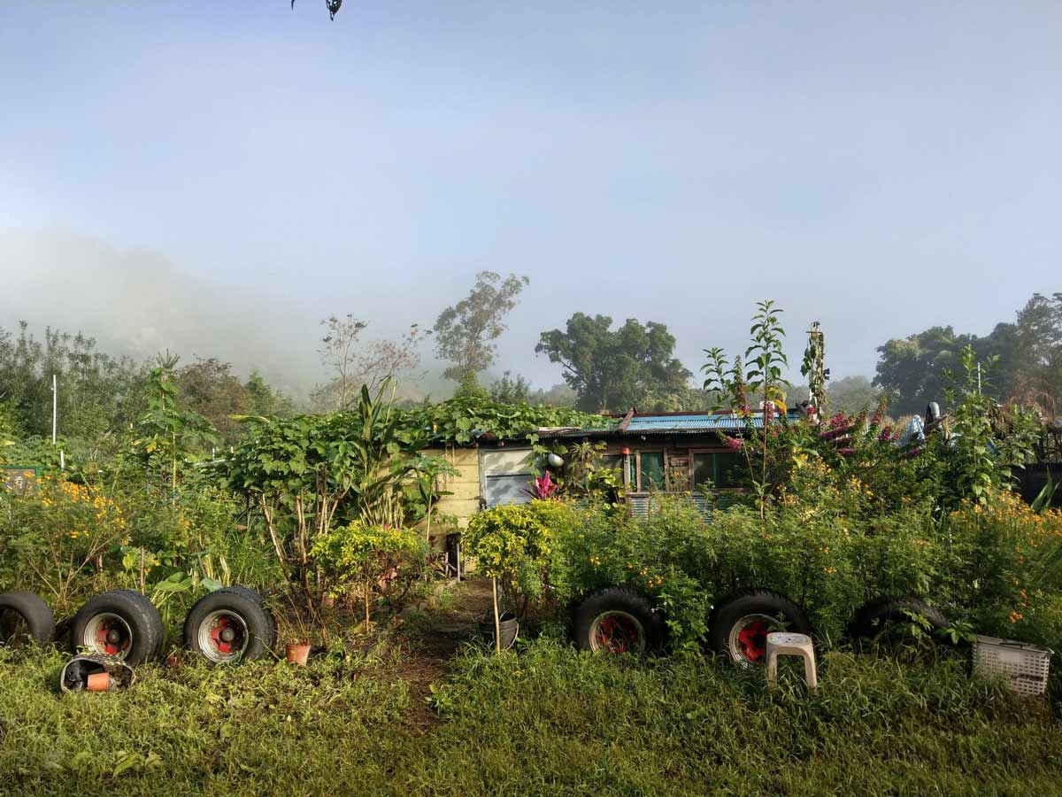 副刊第一四七期 | 農家小建設