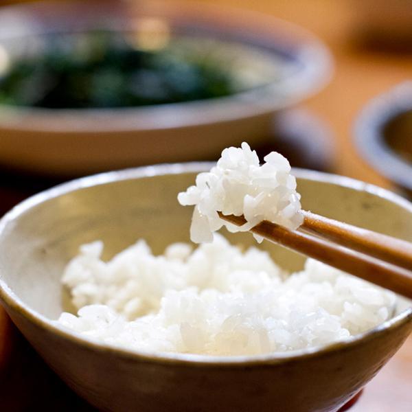 好吃的米飯請大家來品嚐!