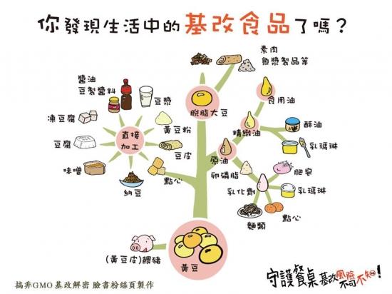 生活中的基改食品-黃豆