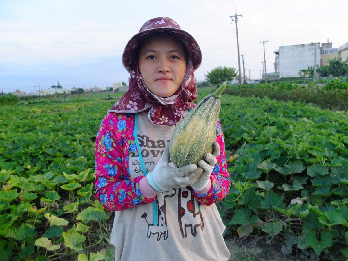 最可愛的青農补阿桂本。