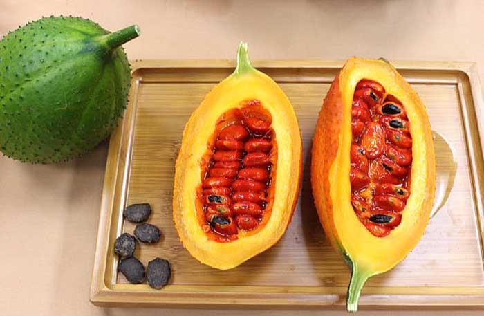 果實未成熟前為青綠色,熟果則呈現鮮豔的橘紅色。
