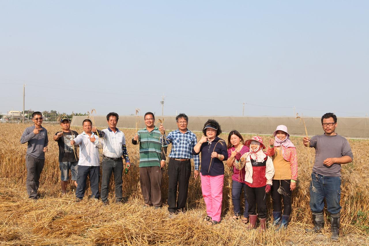 05 民間的努力 小麥復耕運動